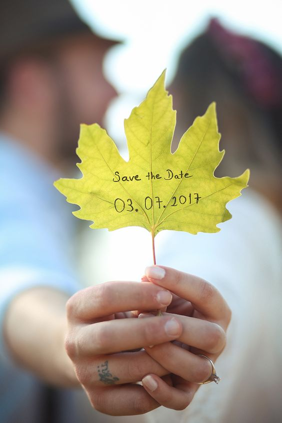 Save the Date gift some seeds